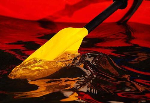 Kayak paddle (Photo by Jeff Rennicke)