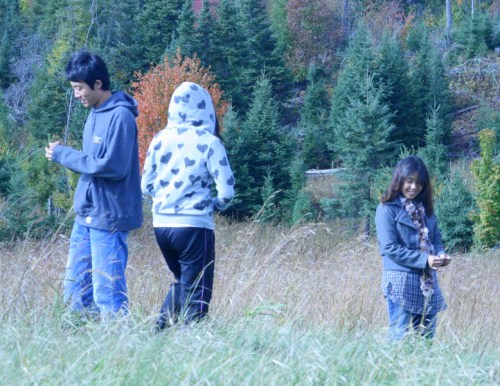 Students in the prairie collecting seeds