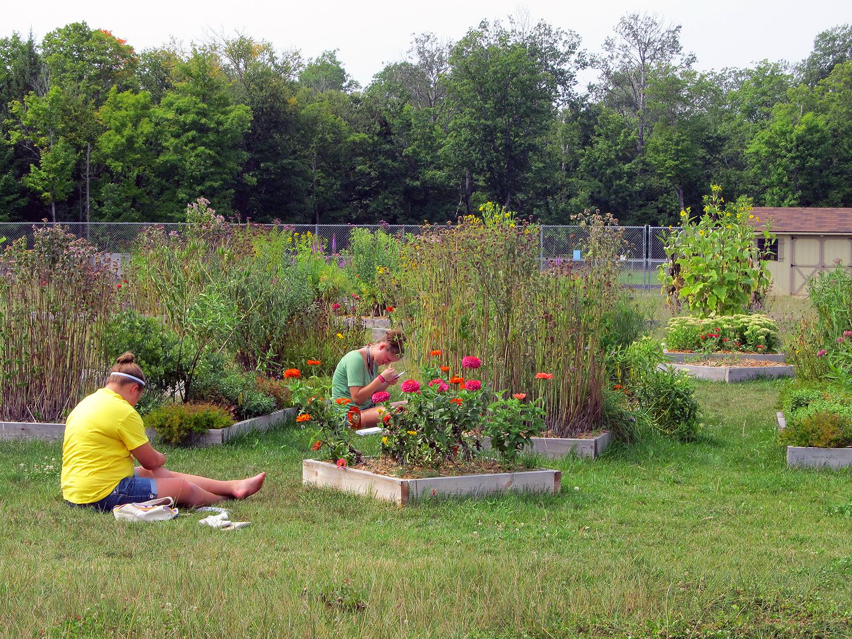 Art In The Conserve School Garden Conserve School Blog