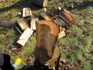 Splitting Wood