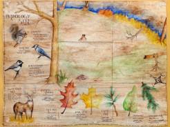 Sune's map