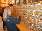 Jennifer selecting seeds to plant in our garden at Conserve School.