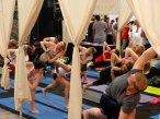 Opportunities to practice and build skills at Green Festival Chicago
