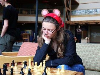 Chess bear