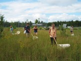 Students in Environmental Science line up to estimate the garden's grasshopper population