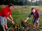 Henry and Woogie Picking Milkweed for their monarchs