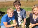 Dane, Charlie, and Siri harvesting onions
