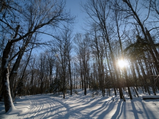 A beautiful day to ski!