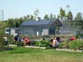 Campus gardens with solar array
