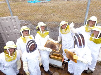 Working with the Conserve School bees