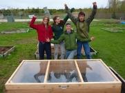Cold Frames to lengthen the growing season