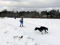 Skijoring!
