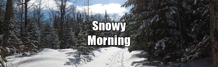 14-03-10 Snowy Morning Wordpress 736 x 229