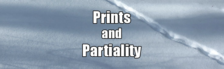 14-03-18 Prints and Partiality 736 x 229