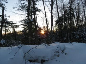 Sun's Rays on the Black Trail ~ Nate Martineau