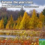 13-10-29 Autumn