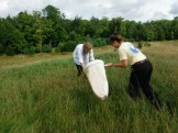 Calla and Ruth hunting grass hoppers