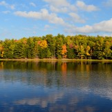 Little Donahue Lake South Shore Reflection