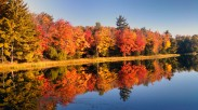 Little Donahue Lake morning reflection