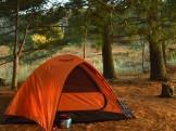 Zoe's Tent