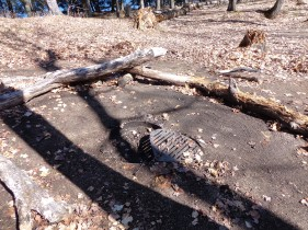 The Osprey fire ring after cleanup