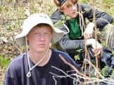 Ben and Jesse removing invasive species
