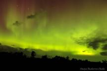 15-08-07 Northern Lights Hudoc 02