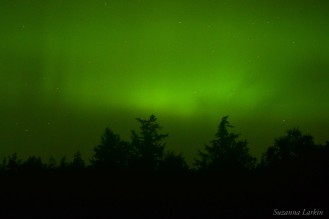 15-08-07 Northern Lights Larkin 01