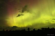15-08-07 Northern Lights Pepich 01