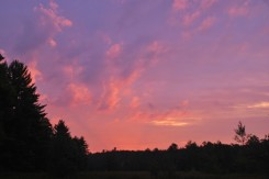 Elly's photo of early evening clouds