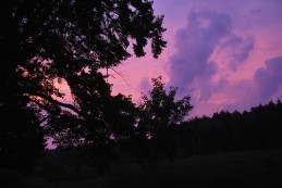 Elly's photo of the beautiful evening sky