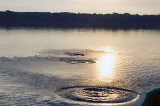 Bram's photo of ripples from a rock skipping over the lake