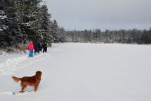 16-02-03 Sylvania Snowshoe 03 Little Donahue Lake