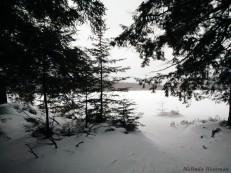 16-02-03 Sylvania Snowshoe 16 Florence Lake