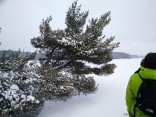 16-02-03 Sylvania Snowshoe 17 Big Bateau Lake