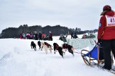 16-02-06 3Bear Start 04 from Houtman snowmobiling spectators