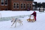 16-02-06 Nakayama 02 mutt race