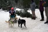 16-02-06 Nakayama 03 2 dog junior volunteers