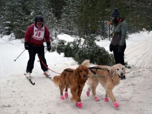 16-02-06 Nakayama 05 ski golden