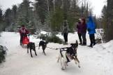16-02-06 Nakayama 06 4dog