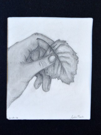 16-03-02 Drawn to Nature Hand with leaf